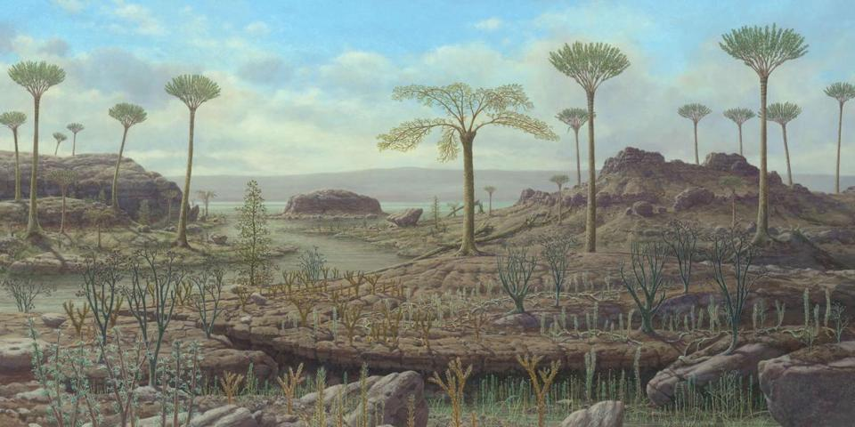 Early and Middle Devonian Period, 416-385 million years ago.